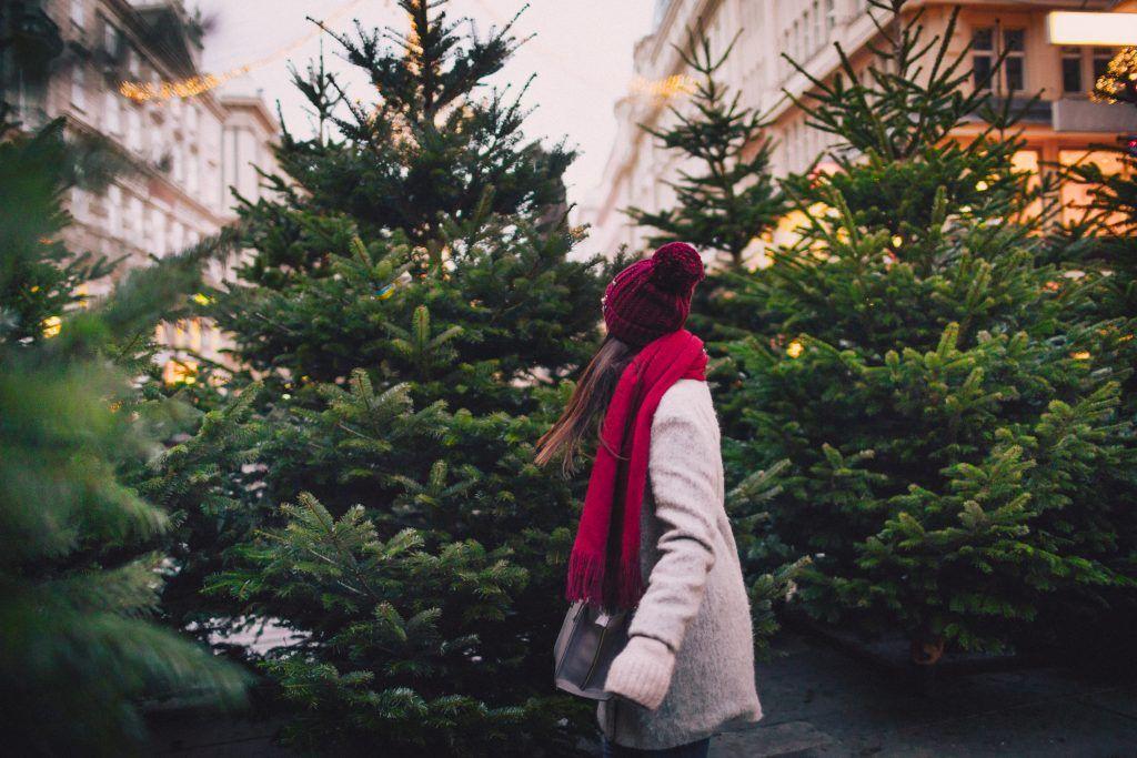 Jente med ryggen til foran flere juletre
